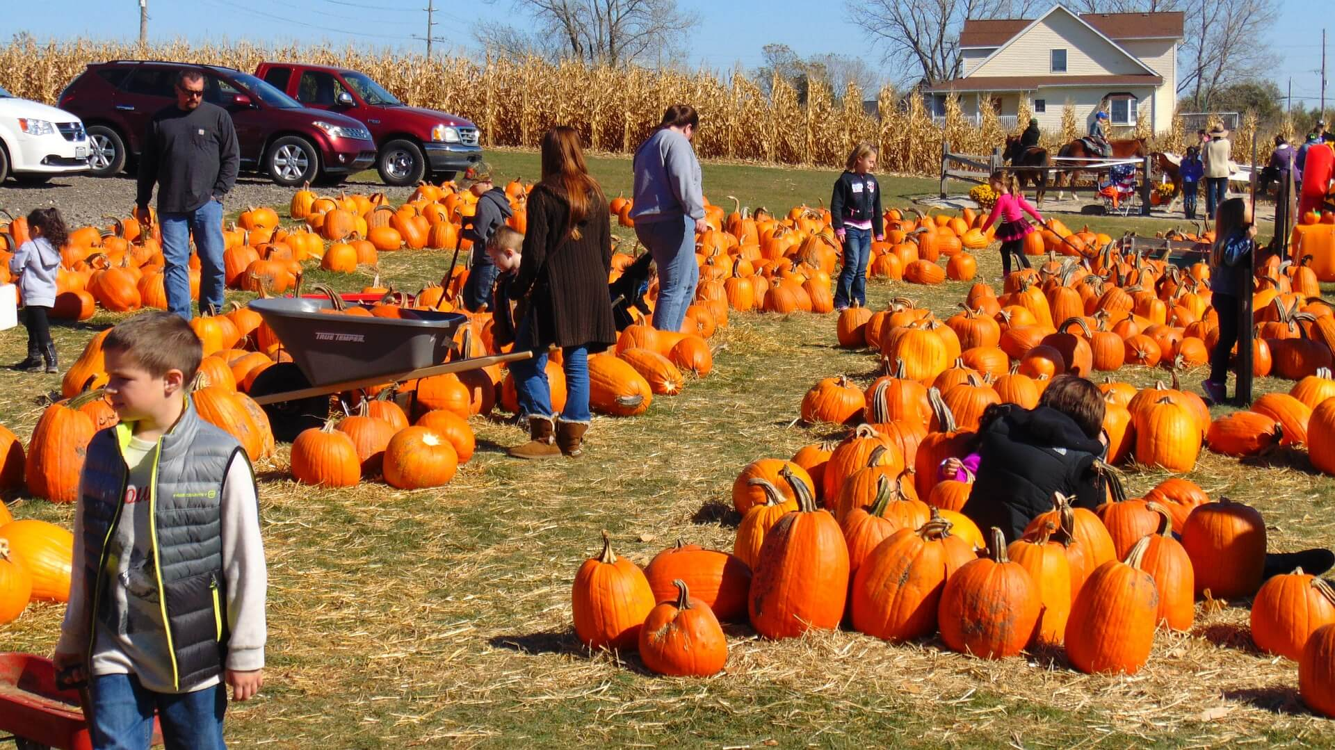 Pumpkin Fest Coming This Weekend