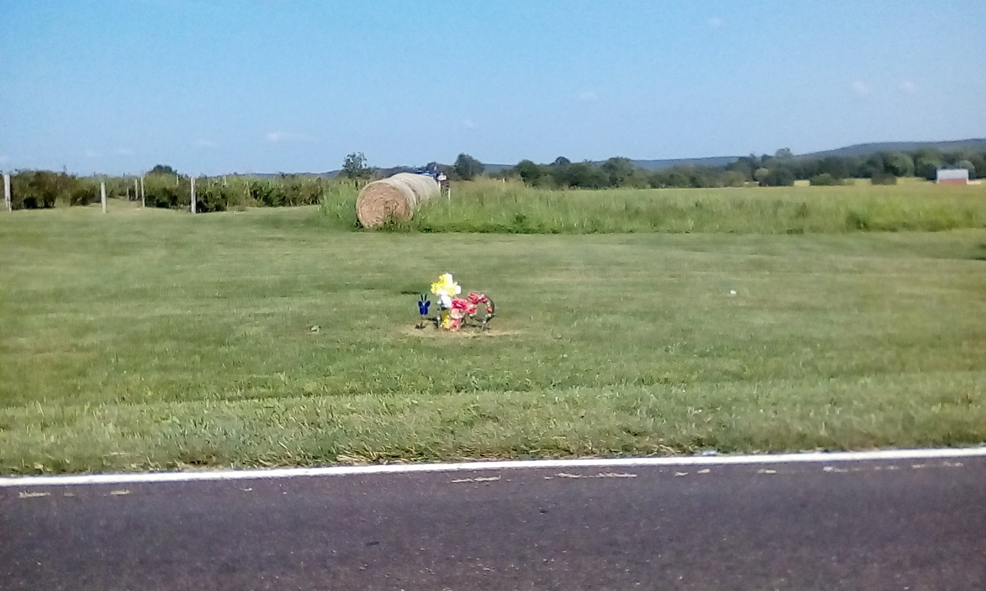 Developments in Fatal Mennonite Buggy Crash